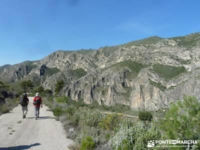 Sierra de Enmedio - Río Guadiela;cercedilla senderismo rutas a pie madrid rutas senderismo la pedri